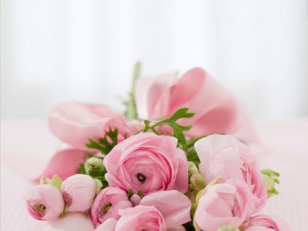 kwiaty z dostawą Katowice